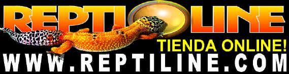 Venta de accesorios para terrarios, reptiles